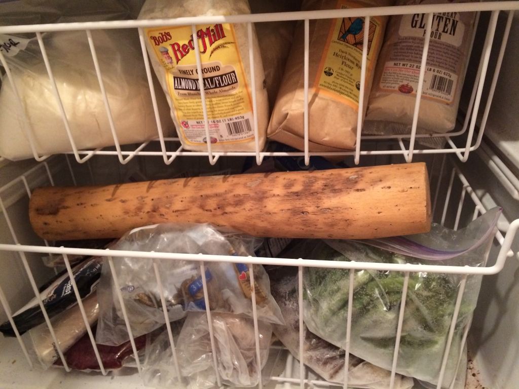 Rain Stick in the Freezer