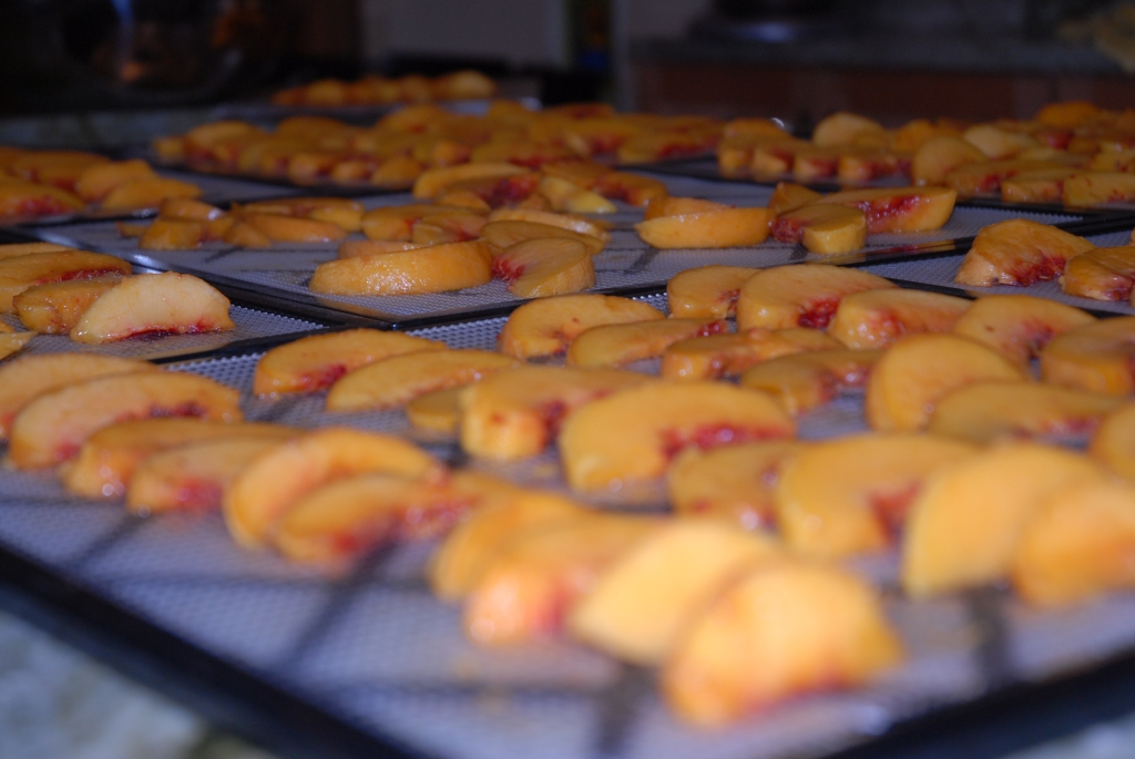 Peaches Dried at Caramelize Life