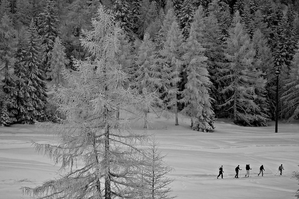 Black and White Backcountry Skiers Italy